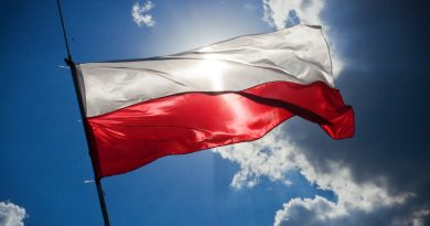 http://kaboompics.com/one_foto/97/flag-of-poland